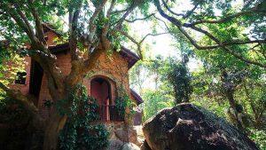 Sự hòa quyện giữa thiên nhiên và nghệ thuật tại bảo tàng Đồng Đình Đà Nẵng