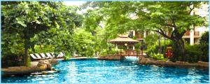 Kết hợp thiên nhiên độc đáo Tại Furama Đà Nẵng