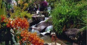Thiên nhiên tại suối Hoa Đà Nẵng