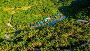Đường đi của InterContinental Đà Nẵng theo đường của cây cối