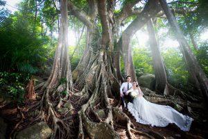 ảnh cưới chụp tại Cây Đa ngàn năm