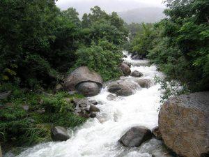 Phong cảnh hữu tình thiên nhiên ban tặng cho khu du lịch suối Lương Đà Nẵng