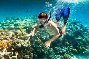 Thủy cung tuyệt đẹp với nhiều rặng san hô rực rỡ