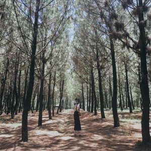 Check in cực chất tại đồi Vọng Cảnh, nơi thu vào tầm mắt khoảng trời Huế