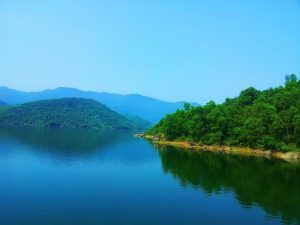 Phong cảnh hữu tình tại Đồng Xanh - Đồng Nghệ