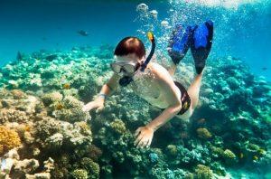 Ngắm thế giới thủy cung tuyệt đẹp